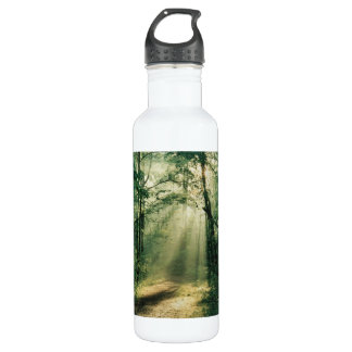 Fall Trees Stainless Steel Water Bottle
