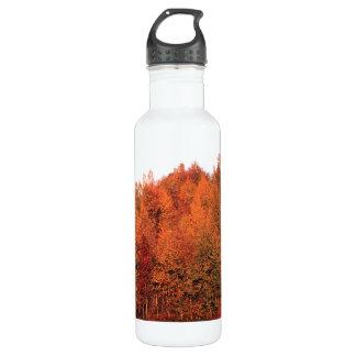 Fall Trees Water Bottle