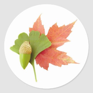 Fall Trio Classic Round Sticker
