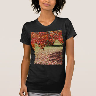 Fall Under The Maple Tree T-Shirt
