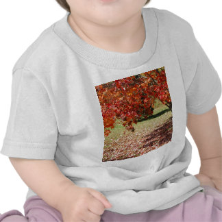 Fall Under The Maple Tree T-shirts