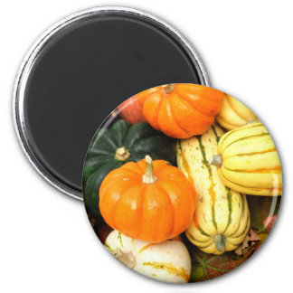 Fall Vegetables Magnet