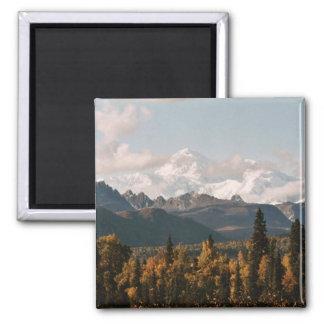 Fall View of Denali, Mt. McKinley Magnet