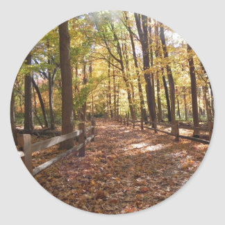 Fall walk in the park and changing colors classic round sticker