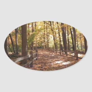 Fall walk in the park and changing colors oval sticker