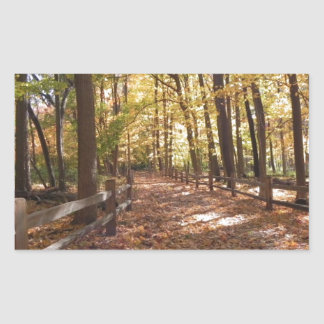 Fall walk in the park and changing colors rectangular sticker