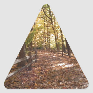 Fall walk in the park and changing colors triangle sticker