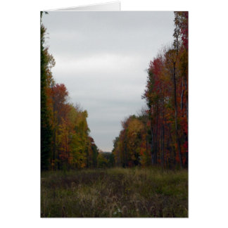 Fall Walls Card