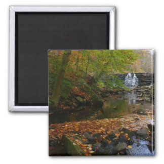 Fall Waterfall and Creek Pennsylvania Nature Photo 2 Inch Square Magnet