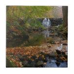 Fall Waterfall and Creek Pennsylvania Nature Photo Ceramic Tile