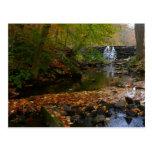 Fall Waterfall and Creek Pennsylvania Nature Photo Postcard