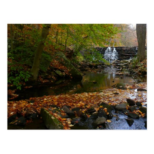 Fall Waterfall and Creek Postcard