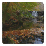 Fall Waterfall and Creek Trivet