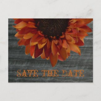 Fall Wedding Save The Date Sunflower Postcard postcard
