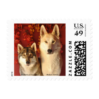 Fall Wolf Alpha Pair Postage Stamps