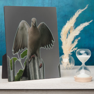Fallen Angel Dove Plaque