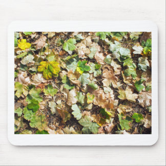 Fallen autumn leaves closeup on the ground mouse pad