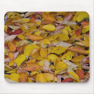 Fallen autumn leaves mouse pad