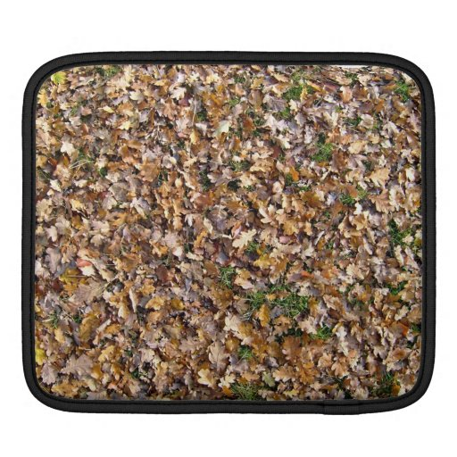 Fallen Autumn Leaves on Grassy Landscape Sleeves For iPads