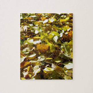 Fallen autumn leaves on the lawn linden closeup jigsaw puzzle