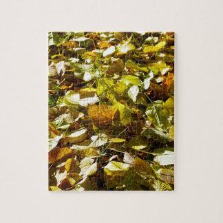 Fallen autumn leaves on the lawn linden closeup puzzle
