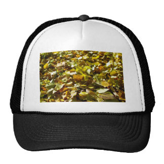 Fallen autumn leaves on the lawn linden closeup trucker hat