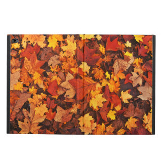 Fallen Autumn Leaves Powis iPad Air 2 Case