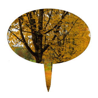 Fallen Fall Color Leaves on Parks Ground Cake Topper