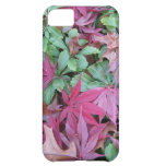 Fallen Japanese Maple leaves. Cover For iPhone 5C