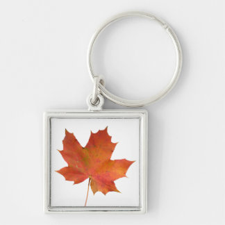 Fallen Leaf 01 Silver-Colored Square Keychain