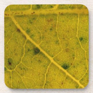 Fallen Leaf 15A Coaster