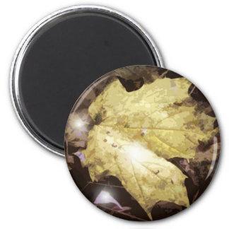 Fallen Leave 2 Inch Round Magnet
