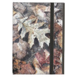 Fallen Leaves Autumn Winter Watercolour Art iPad Folio Cases