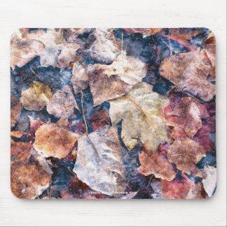 Fallen Leaves Autumn Winter Watercolour Art Mouse Pad