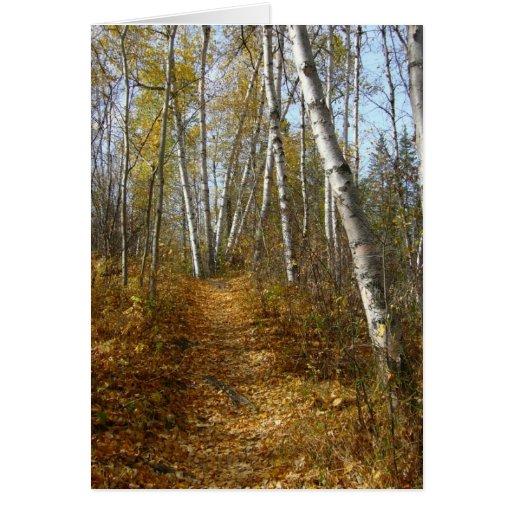 Fallen Leaves Card