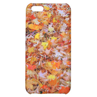 Fallen Leaves Case For iPhone 5C