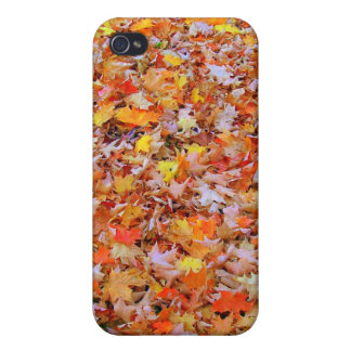 Fallen Leaves Cases For iPhone 4