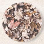 Fallen Leaves Coaster - 1
