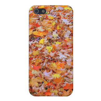 Fallen Leaves Covers For iPhone 5