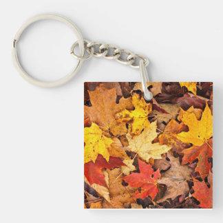 Fallen leaves in autumn keychain