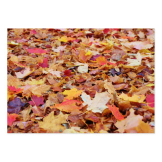 Fallen Leaves in Autumn Large Business Card
