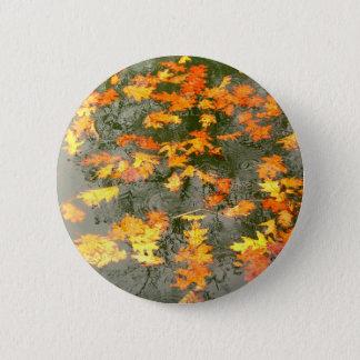 fallen leaves in rain button