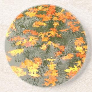 fallen leaves in rain coaster