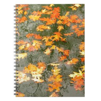 fallen leaves in rain note book