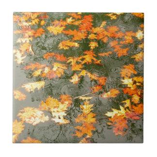 fallen leaves in rain tile