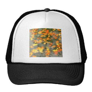 fallen leaves in rain trucker hat