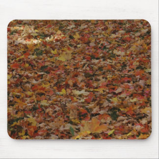 Fallen Leaves Mouse Pad