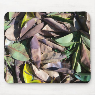 Fallen Leaves. Mouse Pad