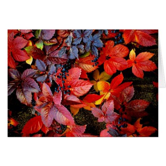 Fallen Leaves Note Card