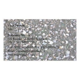 Fallen leaves on grass business card